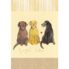 Buy Alex Clark Tea Towels Tea Towel Loyal Labs at Louis Potts