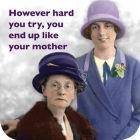 Buy Cath Tate Photocaptions Coasters Like Your Mother Coaster at Louis Potts
