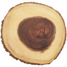 Buy Creative Tops Gourmet Cheese Rustic Bark Serving Board Small at Louis Potts