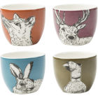 Buy Creative Tops Into The Wild Eggcup Set of 4 Into The Wild at Louis Potts