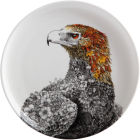 Buy Maxwell & Williams Marini Ferlazzo Plate 20cm Colour Wedge Tail Eagle at Louis Potts
