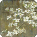 Buy Pimpernel Fruits and Floral Dogwood In Spring Coasters Set of 6 at Louis Potts