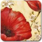 Buy Pimpernel Fruits and Floral Poppy De Villeneuve Coasters Set of 6 at Louis Potts