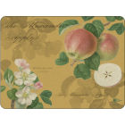 Buy Pimpernel Fruits and Floral RHS Hookers Fruits Gold Placemats Set of 6 at Louis Potts