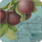 Buy Pimpernel Fruits and Floral RHS Hookers Fruits Teal Coasters Set of 6 at Louis Potts