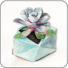 Buy Pimpernel Fruits and Floral Succulents Coasters Set of 6 at Louis Potts