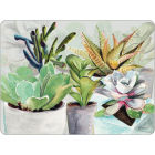 Buy Pimpernel Fruits and Floral Succulents Placemats Set of 4 at Louis Potts