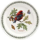 Buy Portmeirion Botanic Garden Birds Plate 20cm (ScarletTanager) at Louis Potts