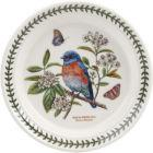 Buy Portmeirion Botanic Garden Birds Plate 20cm (WesternBluebird) at Louis Potts