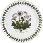 Buy Portmeirion Botanic Garden Bread Plate 13cm (Daisy) at Louis Potts