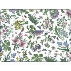 Buy Portmeirion Botanic Garden Chintz Placemats Set of 6 at Louis Potts