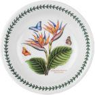 Buy Portmeirion Botanic Garden Exotic Pasta Bowl 20cm (BirdofParadise) at Louis Potts
