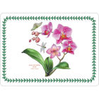 Buy Portmeirion Botanic Garden Exotic Placemat Large Set of 4 at Louis Potts