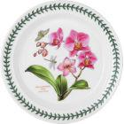 Buy Portmeirion Botanic Garden Exotic Plate 20cm (MothOrchid) at Louis Potts