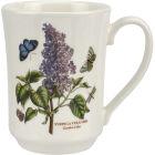 Garden Lilac