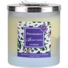 Buy Portmeirion Botanic Garden Glass Candle 2 Wick Wax Filled Lavender at Louis Potts