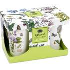 Buy Portmeirion Botanic Garden Mandarin Mug Set of 2 (M) at Louis Potts