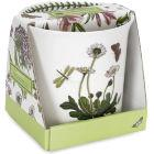 Buy Portmeirion Botanic Garden Orchid Pot at Louis Potts