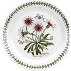 Buy Portmeirion Botanic Garden Plate 20cm (TreasureFlower) at Louis Potts