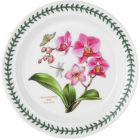 Buy Portmeirion Botanic Garden Plate 25cm (MothOrchid) at Louis Potts