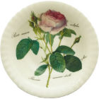 Buy Roy Kirkham Redoute Rose Salad Bowl at Louis Potts