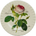 Buy Roy Kirkham Redoute Rose Tea Plate 20cm at Louis Potts