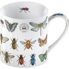 Buy Royal Botanical Gardens Kew Mug Collection Mug Bug Study at Louis Potts