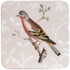 Buy Royal Horticultural Society RHS Mugs Coaster Set of 4 Curious Birds at Louis Potts