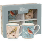 Buy Royal Horticultural Society RHS Mugs Mug Small Set of 4 Curious Birds at Louis Potts