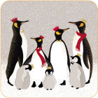 Buy Sara Miller Christmas Collection Coaster Set of 6 Christmas Penguins at Louis Potts
