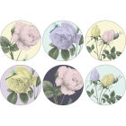 Buy Ted Baker The Fine Collection Coaster Round Set of 6 Rosie Lee at Louis Potts