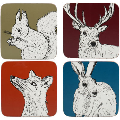 Creative Tops Into The Wild Coaster Mixed Set of 4 Into The Wild