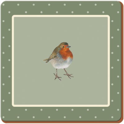 Creative Tops Into The Wild Coaster Set of 6 Robin Into The Wild