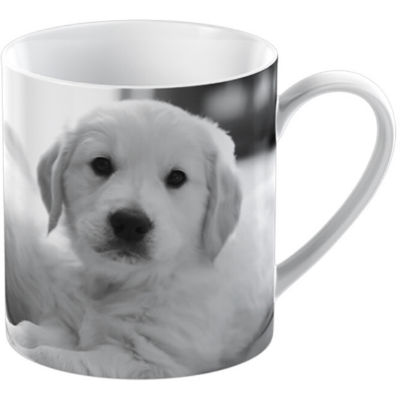 Creative Tops Into The Wild Mug Puppy Pet Corner