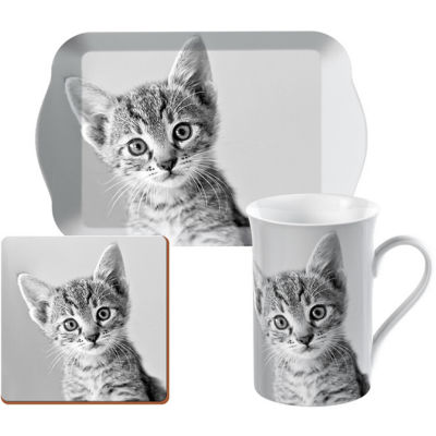 Creative Tops Into The Wild Time For Tea Set Kitten Pet Corner