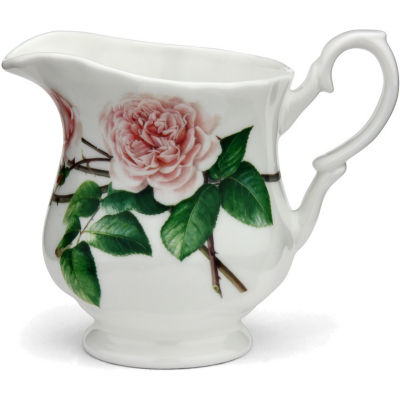 David Austin Roses  English Rose Cream Jug English Rose