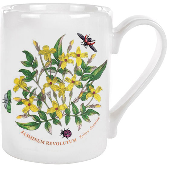 Portmeirion Botanic Garden Coffee Mug Yellow Jasmine Louis Potts