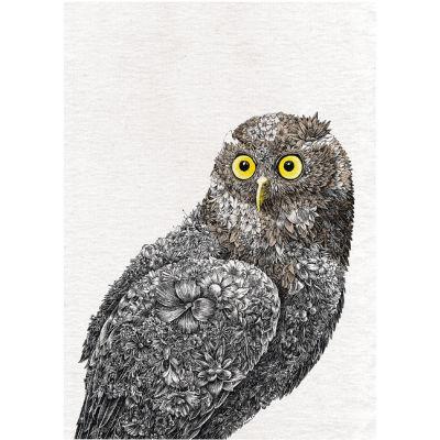 Maxwell & Williams Marini Ferlazzo Tea Towel Colour Owl