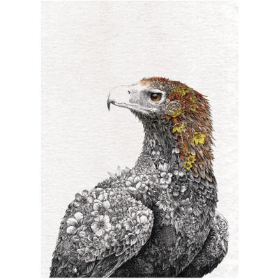 Maxwell & Williams Marini Ferlazzo Tea Towel Colour Wedge Tail Eagle