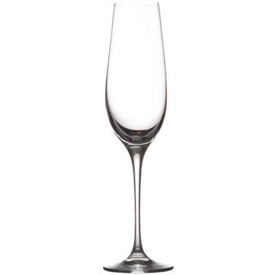Maxwell & Williams Vino Flute Champagne Glass Set of 6