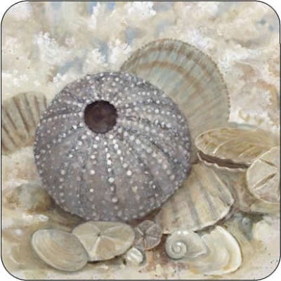 Pimpernel Scenic and Decorative Beach Prize Coasters Set of 6