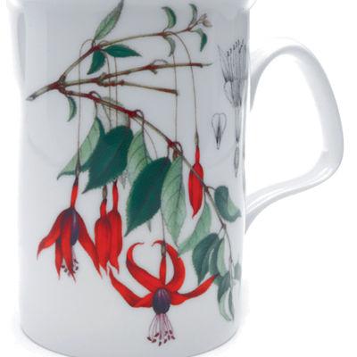 Fuchsia Lancaster Mug