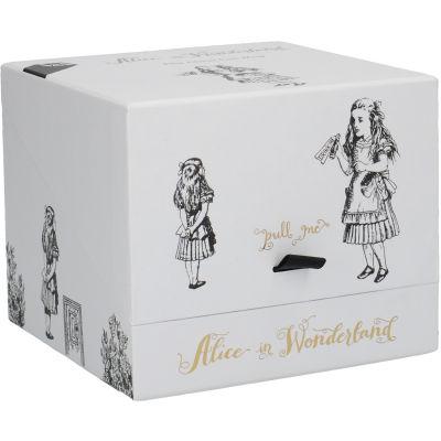 Victoria and Albert Museum Alice In Wonderland Mug Can Alice
