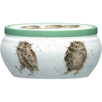 Wrendale Fragranced Candle Tin Owl What A Hoot